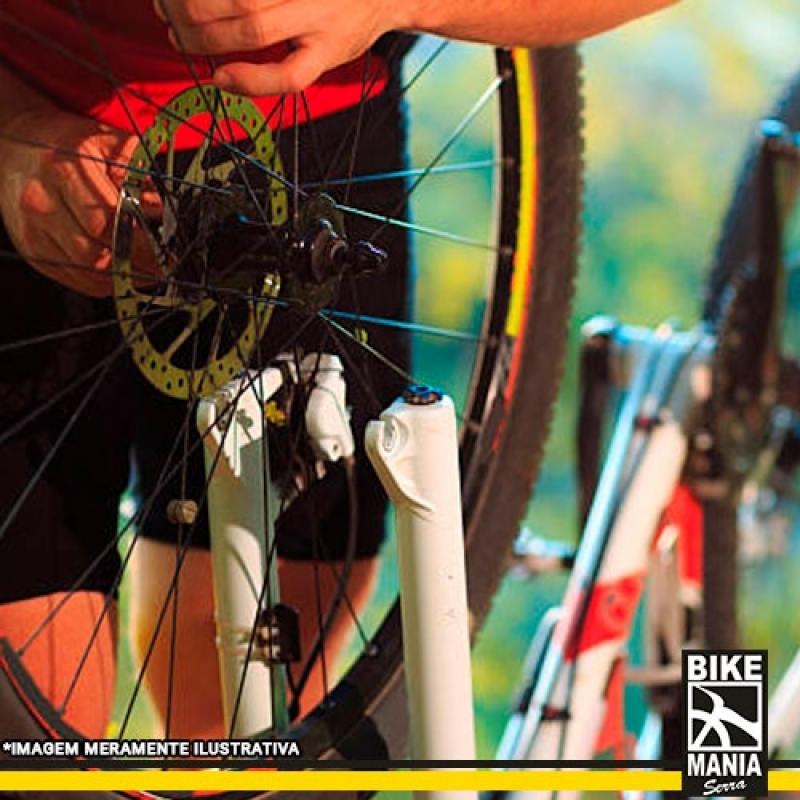 Qual o Valor de Lubrificação de Suspensão de Bicicleta Itaquaquecetuba - Lubrificação de Suspensão de Bike com Trava